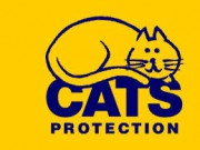 image for Cats Protection